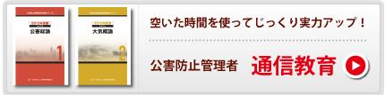 tushin_03.jpg